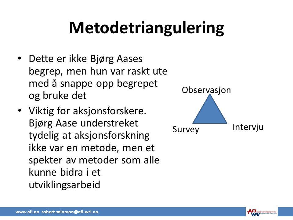 Metodetriangulering Dette er ikke Bjørg Aases begrep, men hun var raskt ute med å snappe opp begrepet og bruke det.