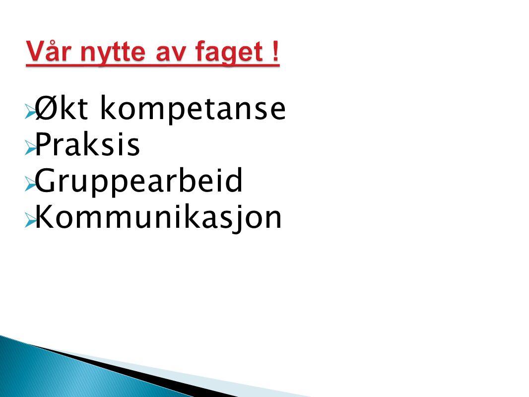 Økt kompetanse Praksis Gruppearbeid Kommunikasjon Vår nytte av faget !