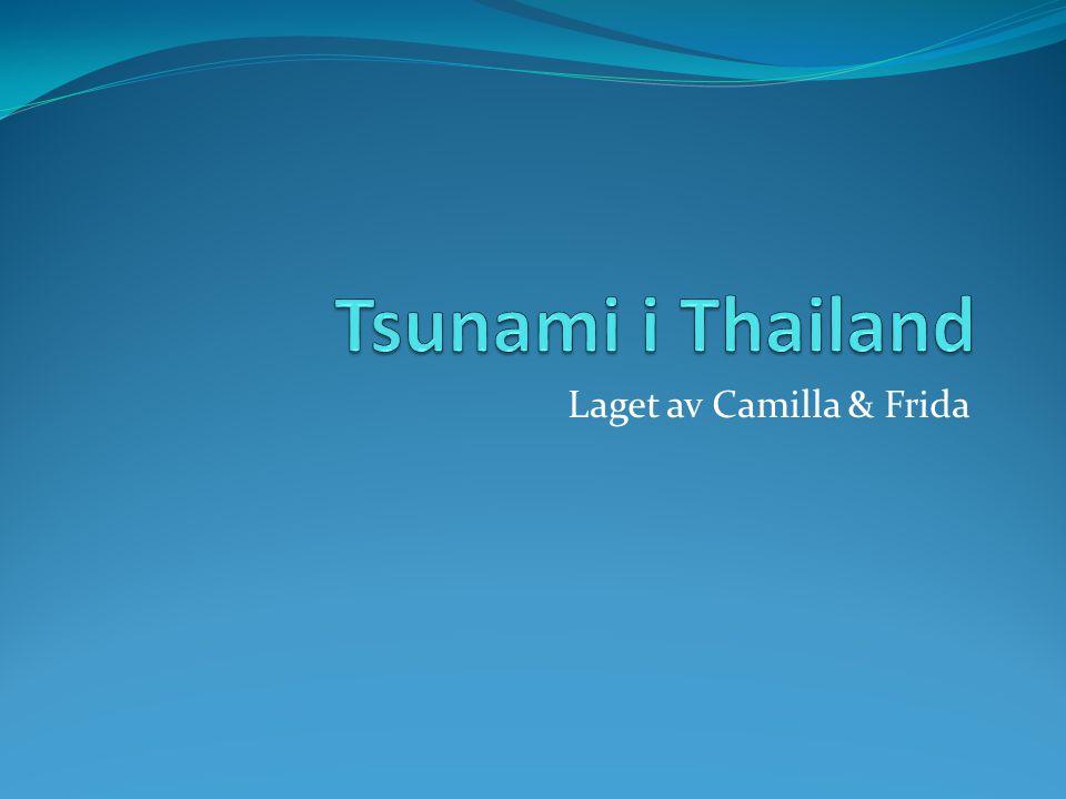 Laget av Camilla & Frida