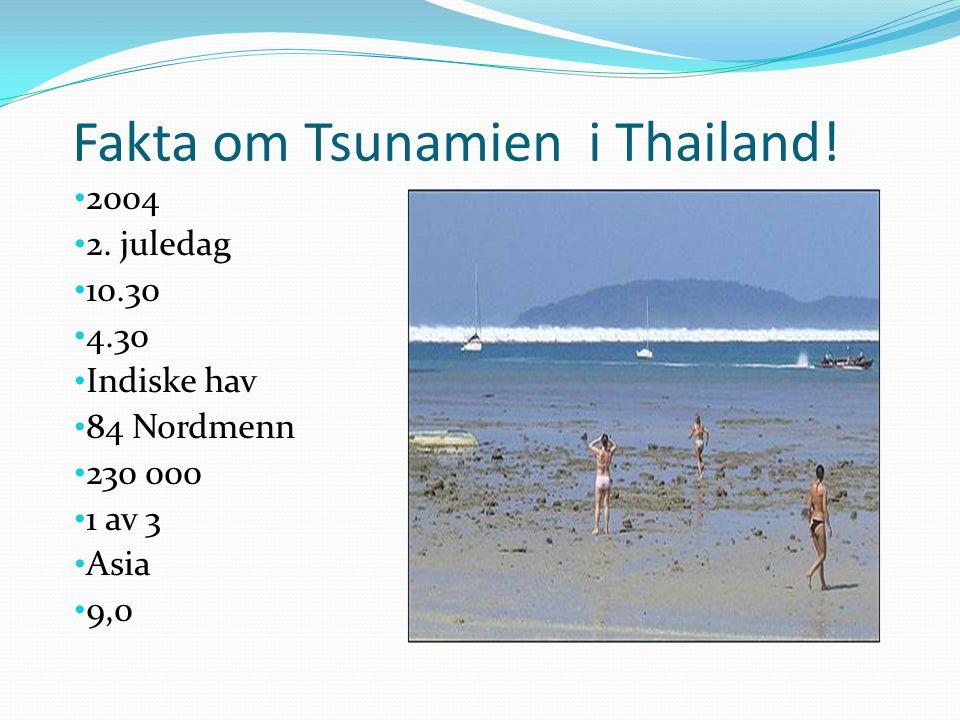 Fakta om Tsunamien i Thailand!