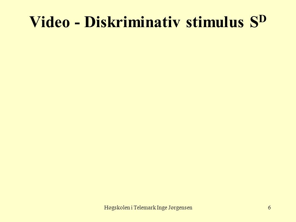 Video - Diskriminativ stimulus SD