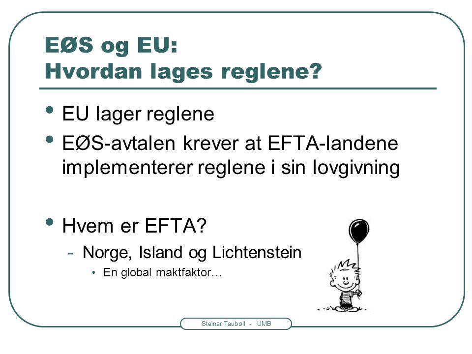 EØS og EU: Hvordan lages reglene