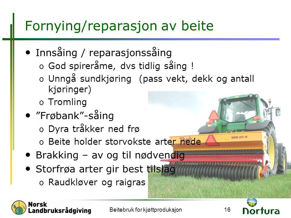 Fornying/reparasjon av beite