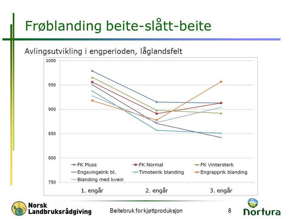 Frøblanding beite-slått-beite