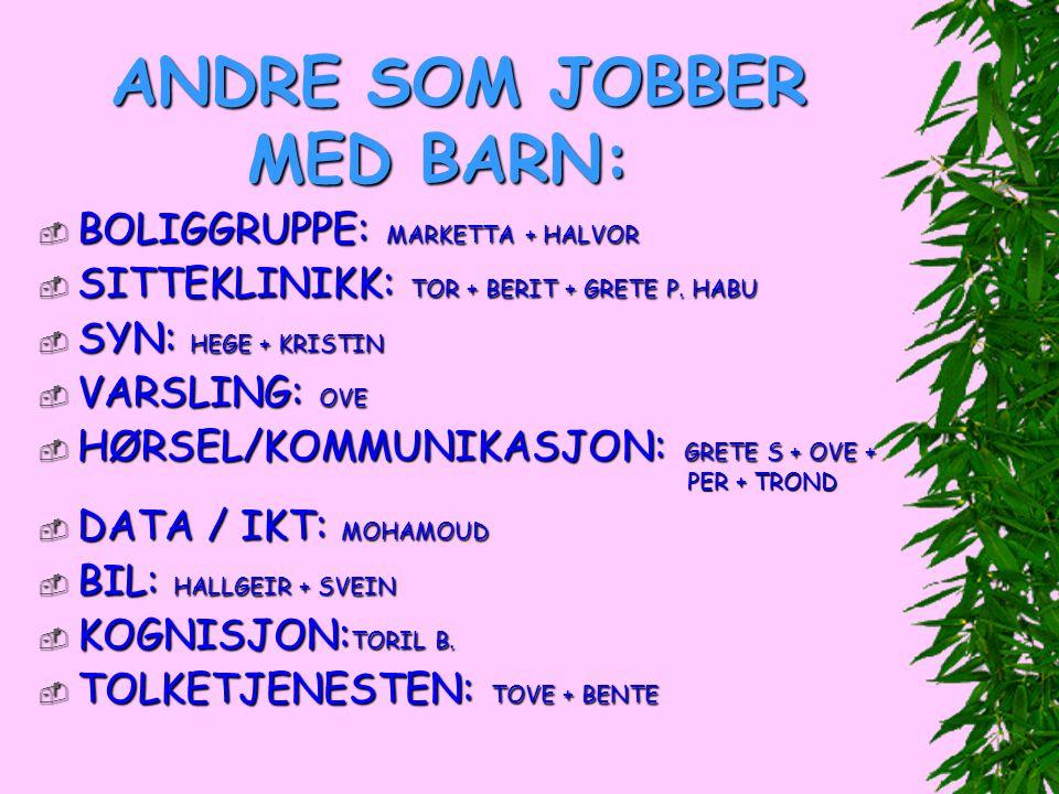 ANDRE SOM JOBBER MED BARN: