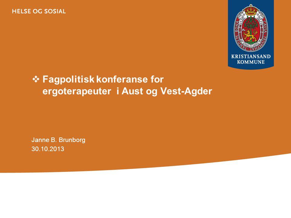 Fagpolitisk konferanse for ergoterapeuter i Aust og Vest-Agder