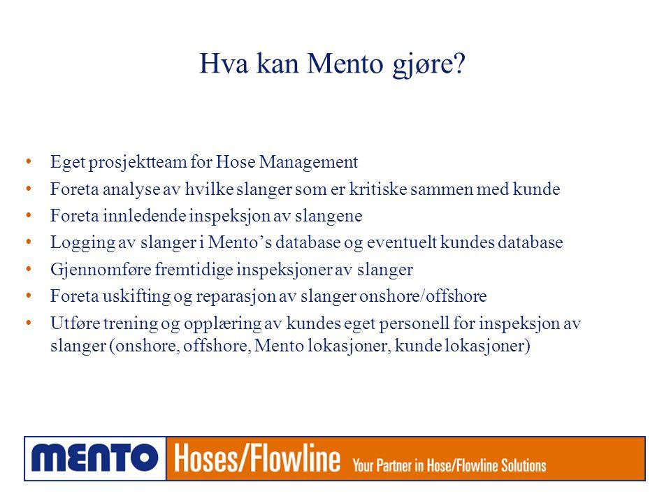 Hva kan Mento gjøre Eget prosjektteam for Hose Management
