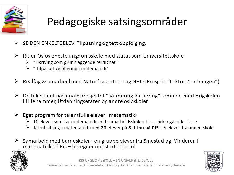 Pedagogiske satsingsområder