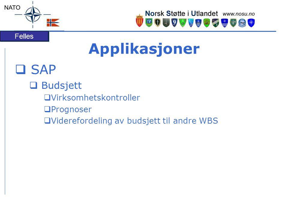 Applikasjoner SAP Budsjett Virksomhetskontroller Prognoser