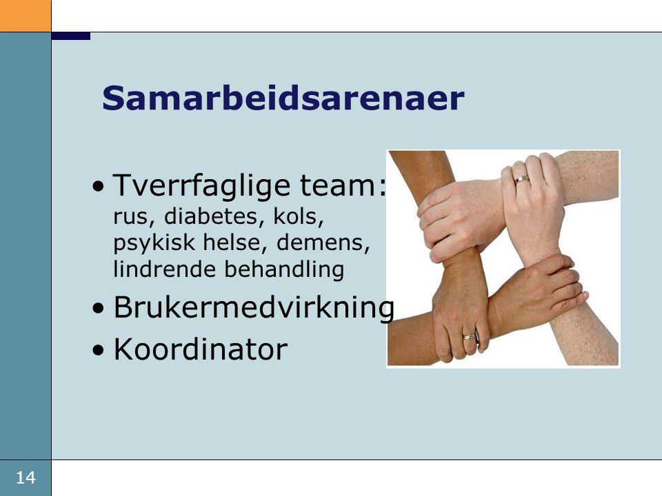 Samarbeidsarenaer Tverrfaglige team: rus, diabetes, kols, psykisk helse, demens, lindrende behandling.