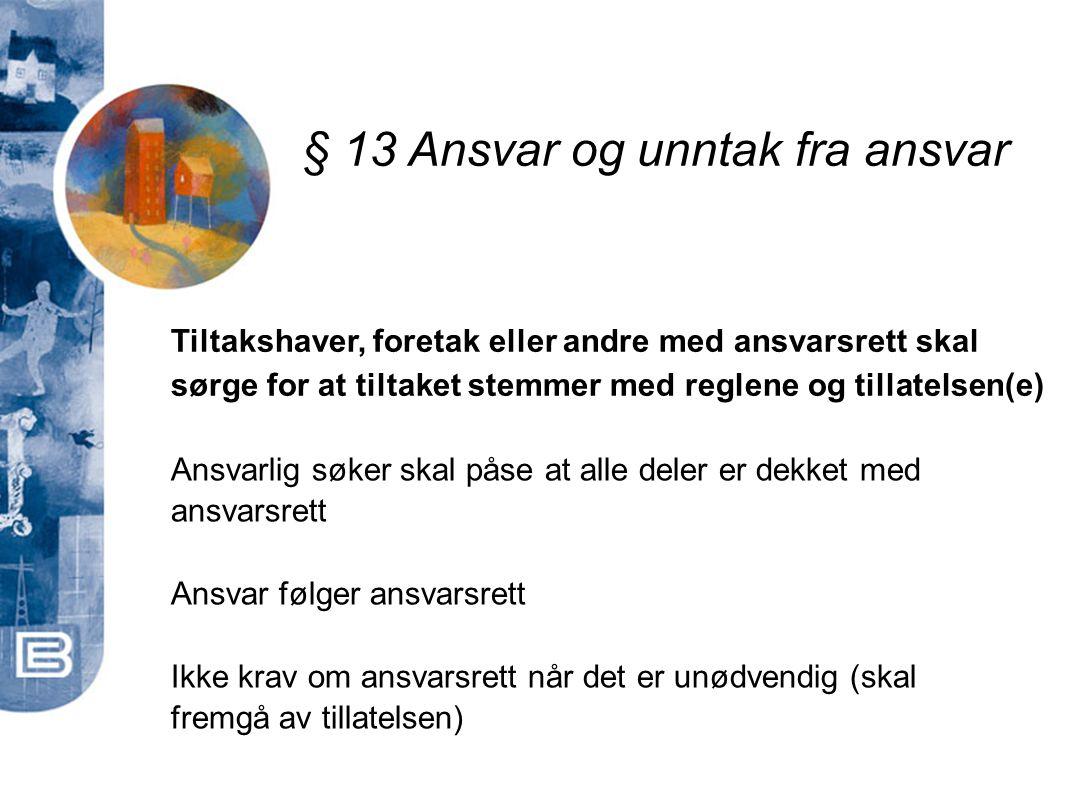 § 13 Ansvar og unntak fra ansvar