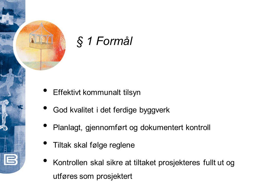 § 1 Formål Effektivt kommunalt tilsyn