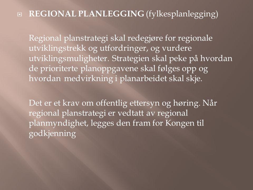REGIONAL PLANLEGGING (fylkesplanlegging)