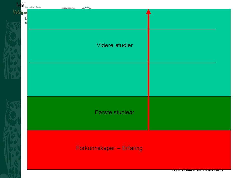 Mål Videre studier Første studieår Forkunnskaper – Erfaring