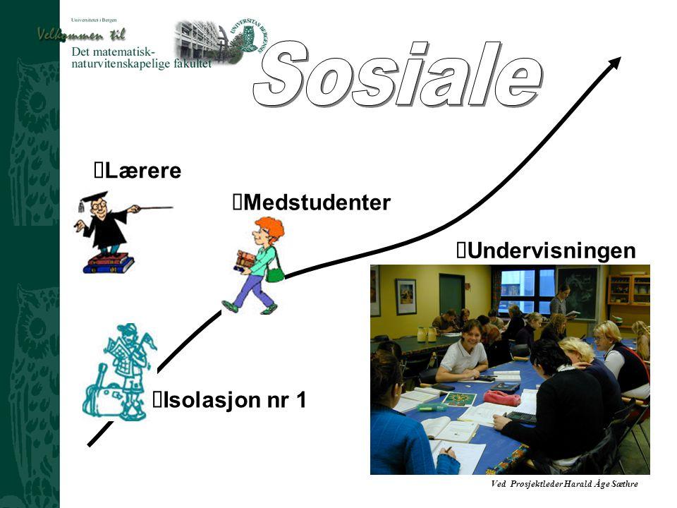 Sosiale Lærere ŸMedstudenter Undervisningen ŸIsolasjon nr 1