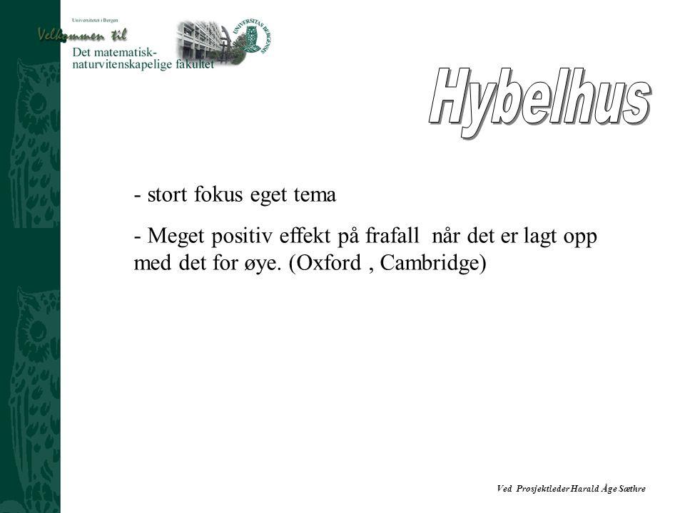 Hybelhus stort fokus eget tema
