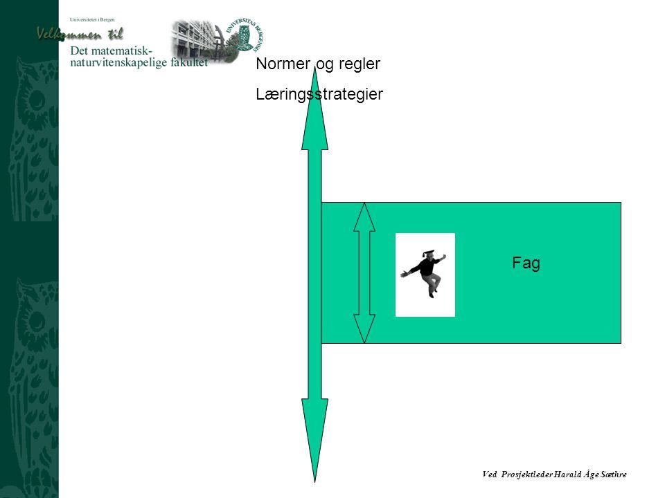 Normer og regler Læringsstrategier Fag