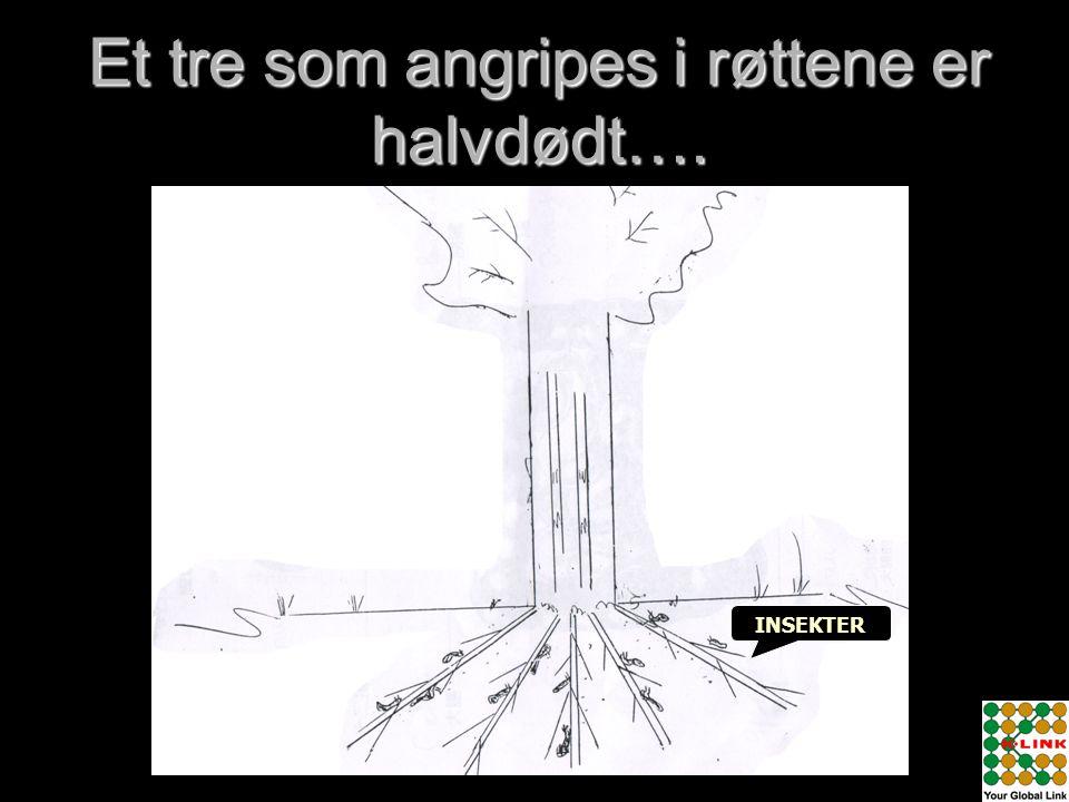 Et tre som angripes i røttene er halvdødt….