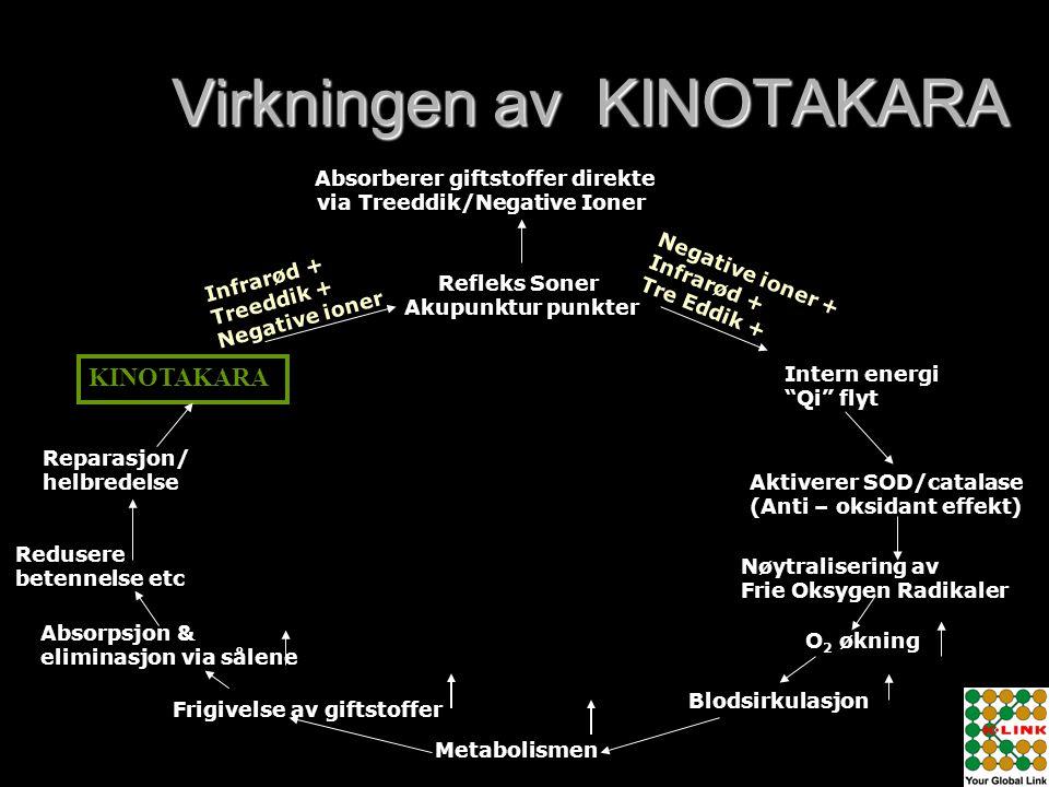 Virkningen av KINOTAKARA