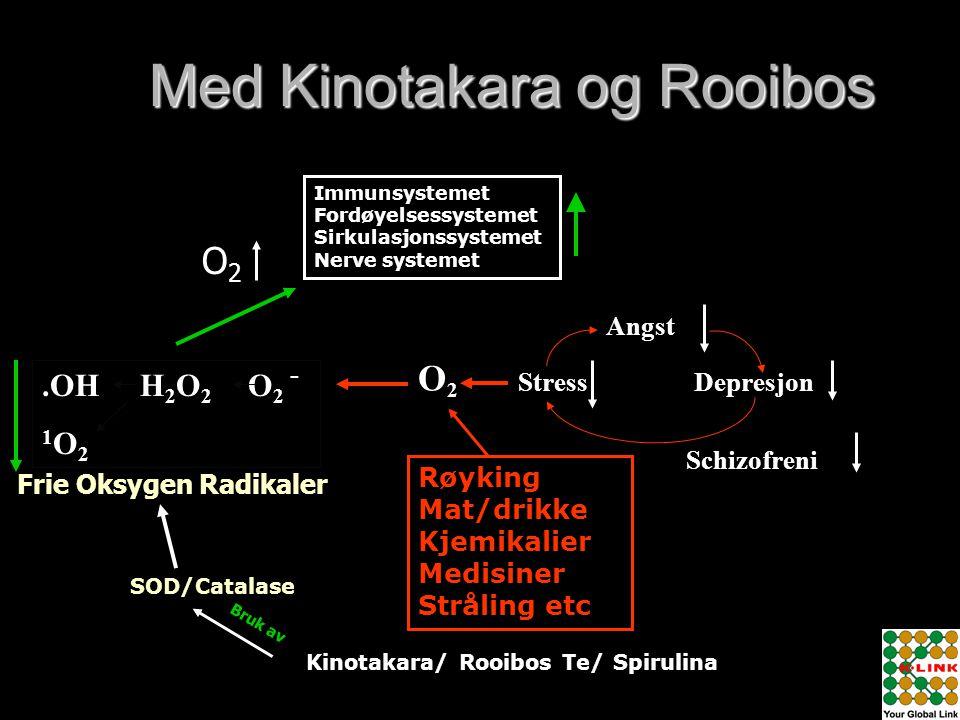 Med Kinotakara og Rooibos
