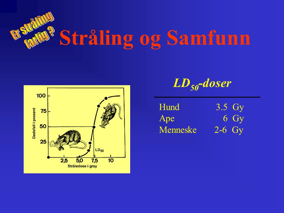 Stråling og Samfunn LD50-doser Er stråling farlig Hund 3.5 Gy