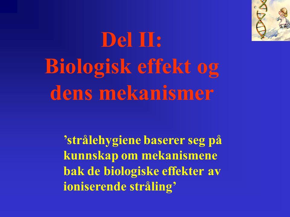 Del II: Biologisk effekt og dens mekanismer