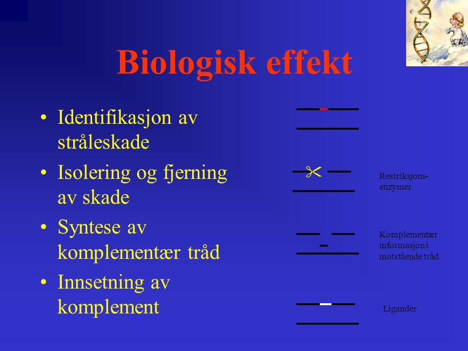 Biologisk effekt Identifikasjon av stråleskade