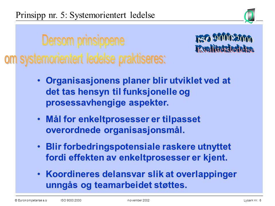 om systemorientert ledelse praktiseres:
