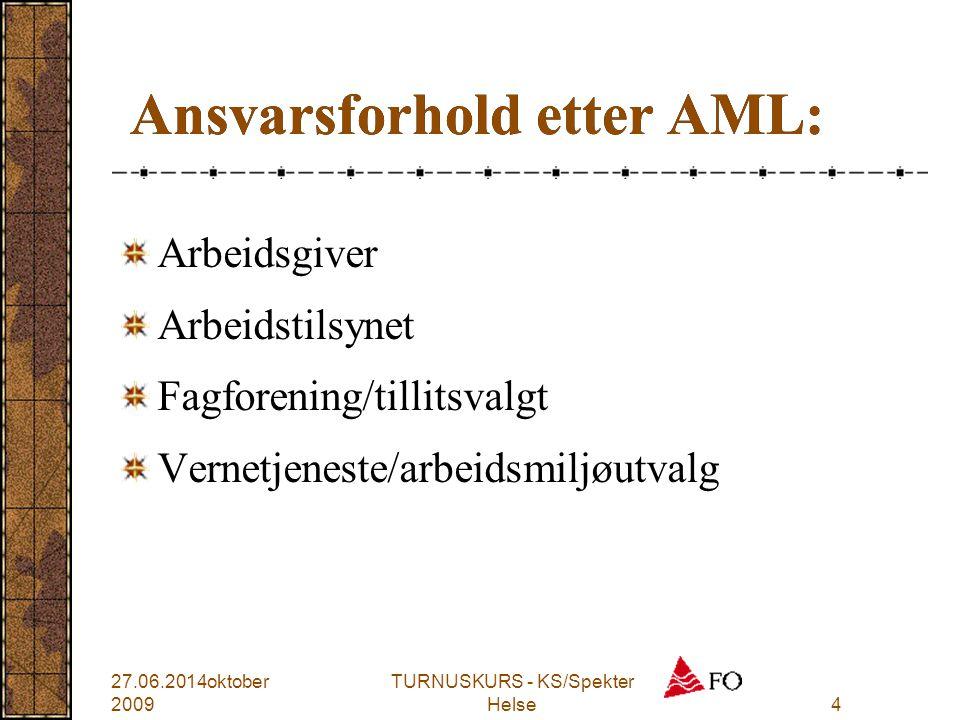 Ansvarsforhold etter AML: