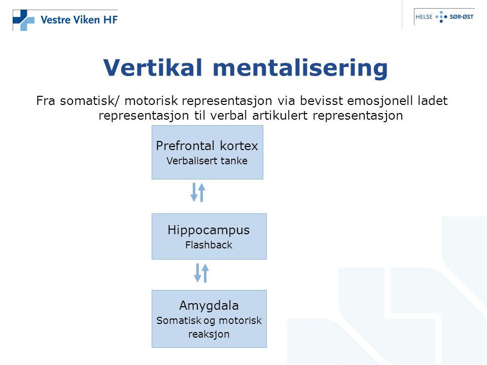 Vertikal mentalisering