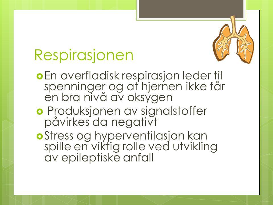 Respirasjonen En overfladisk respirasjon leder til spenninger og at hjernen ikke får en bra nivå av oksygen.