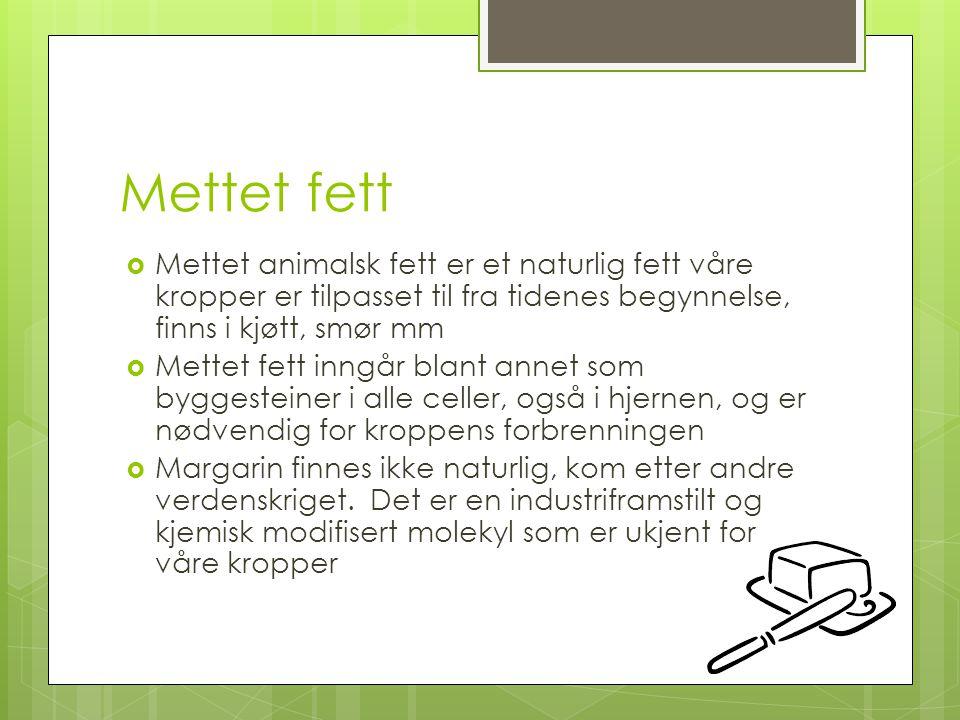 Mettet fett Mettet animalsk fett er et naturlig fett våre kropper er tilpasset til fra tidenes begynnelse, finns i kjøtt, smør mm.