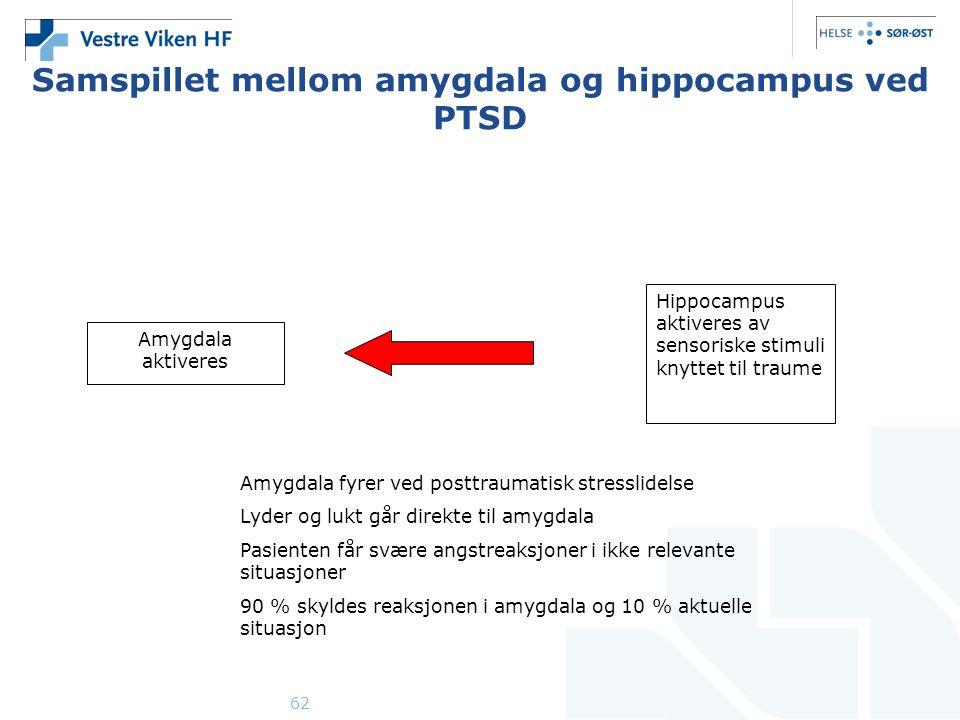 Samspillet mellom amygdala og hippocampus ved PTSD