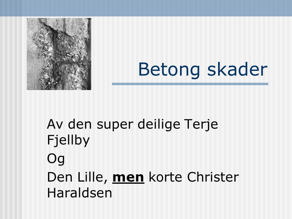 Betong skader Av den super deilige Terje Fjellby Og