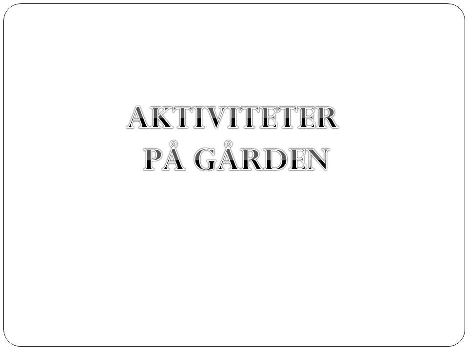 AKTIVITETER PÅ GÅRDEN
