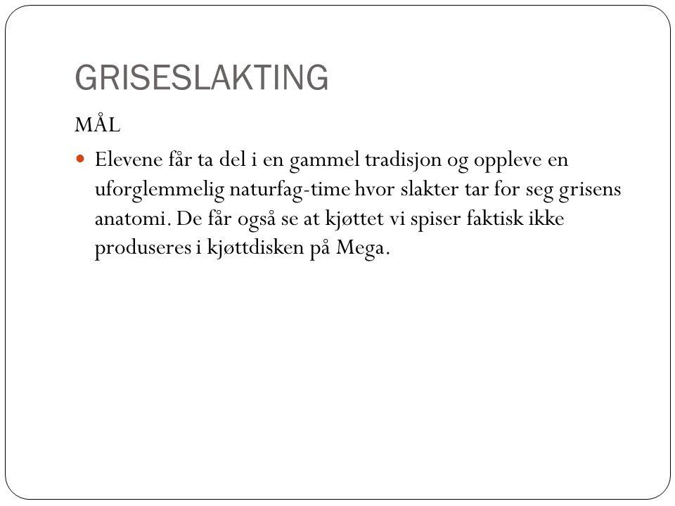 GRISESLAKTING MÅL.