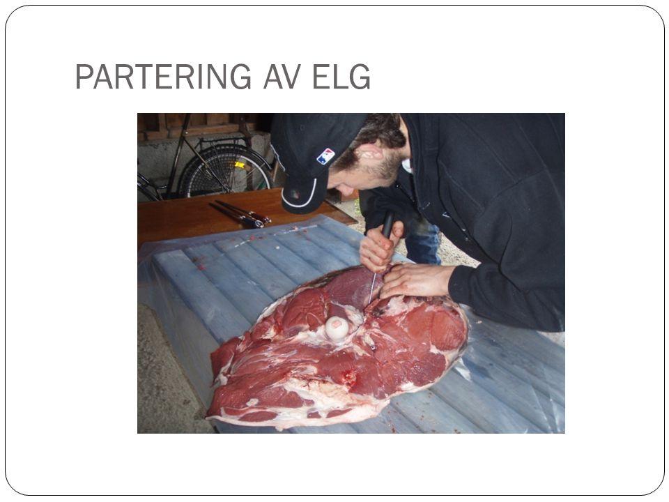 PARTERING AV ELG