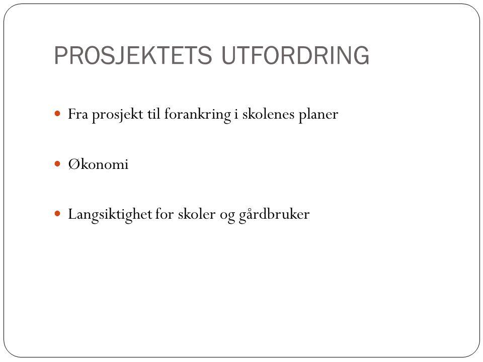 PROSJEKTETS UTFORDRING