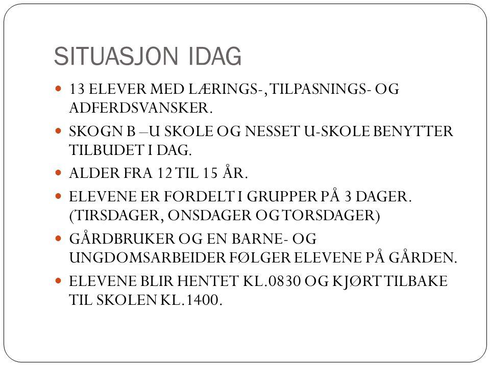 SITUASJON IDAG 13 ELEVER MED LÆRINGS-, TILPASNINGS- OG ADFERDSVANSKER.