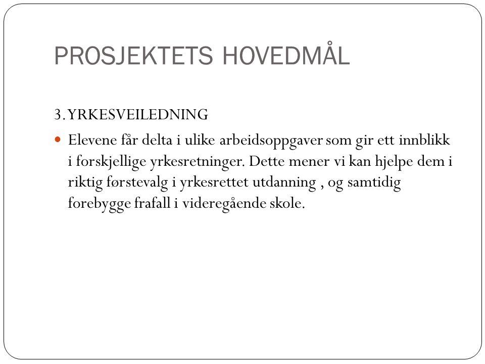 PROSJEKTETS HOVEDMÅL 3. YRKESVEILEDNING