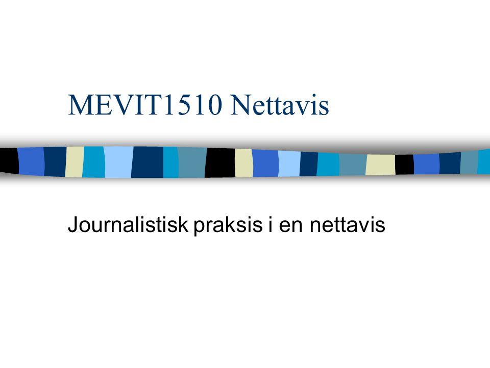 Journalistisk praksis i en nettavis