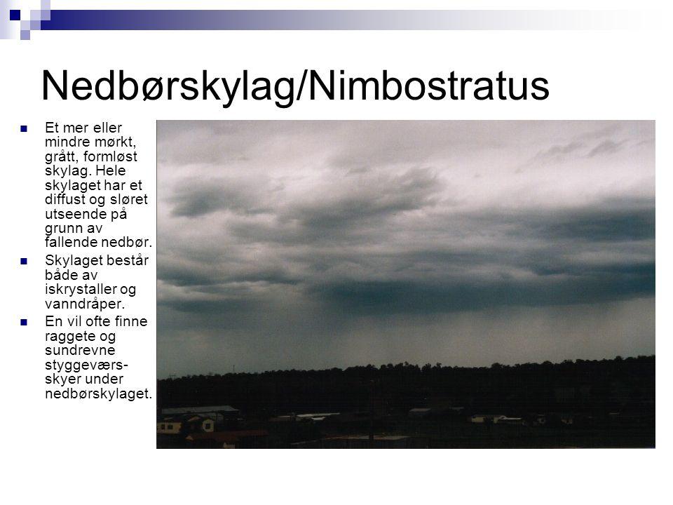 Nedbørskylag/Nimbostratus