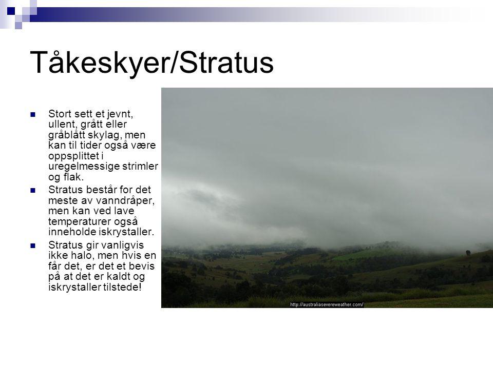 Tåkeskyer/Stratus Stort sett et jevnt, ullent, grått eller gråblått skylag, men kan til tider også være oppsplittet i uregelmessige strimler og flak.