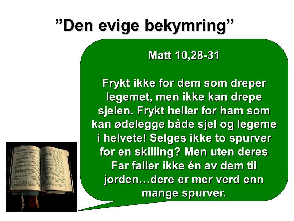 Den evige bekymring Matt 10,28-31