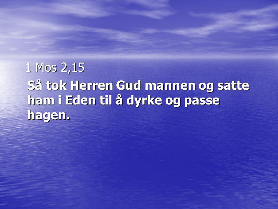 1 Mos 2,15 Så tok Herren Gud mannen og satte ham i Eden til å dyrke og passe hagen.