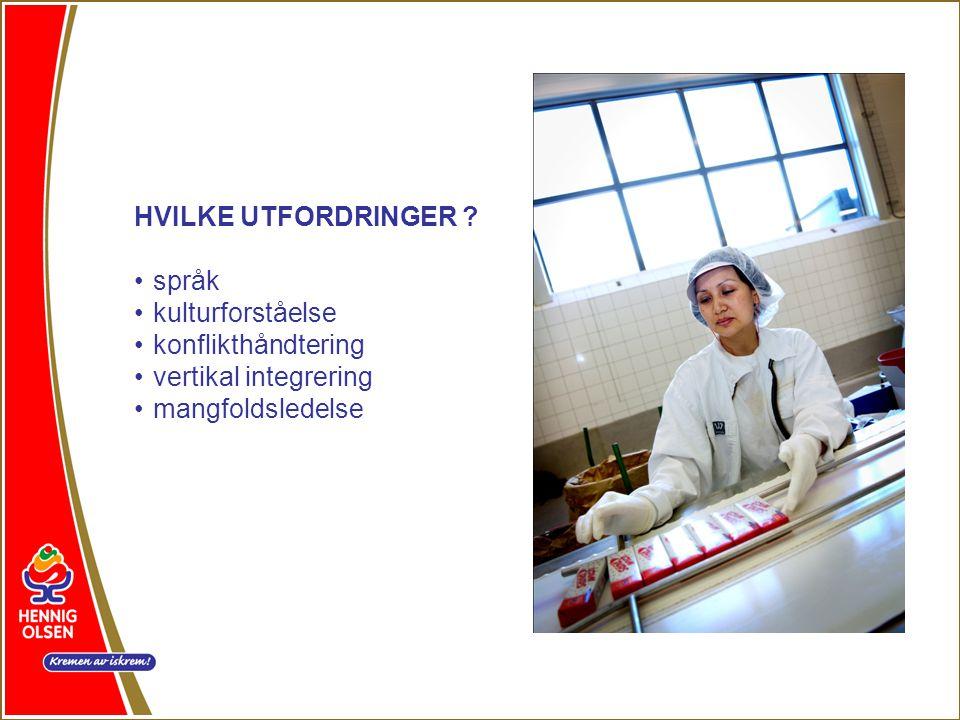 HVILKE UTFORDRINGER . språk. kulturforståelse. konflikthåndtering.