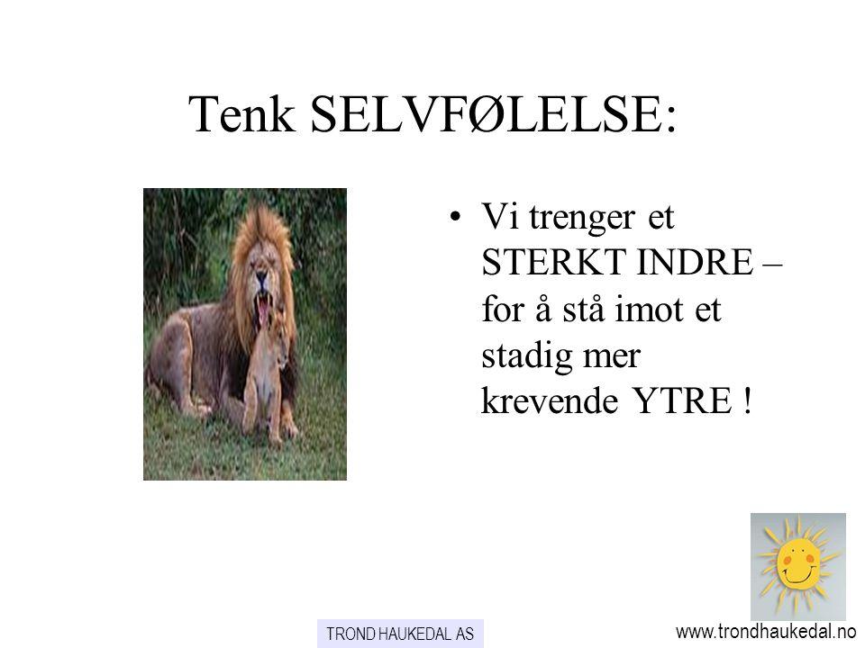 Tenk SELVFØLELSE: Vi trenger et STERKT INDRE – for å stå imot et stadig mer krevende YTRE ! www.trondhaukedal.no.