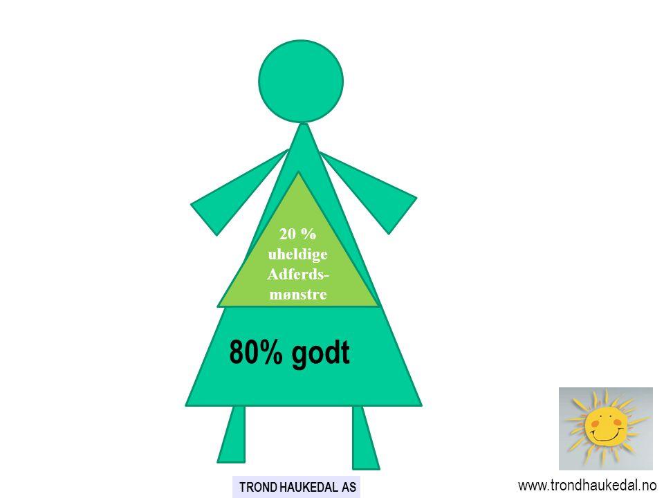 80% godt 80% 20 % uheldige Adferds-mønstre www.trondhaukedal.no