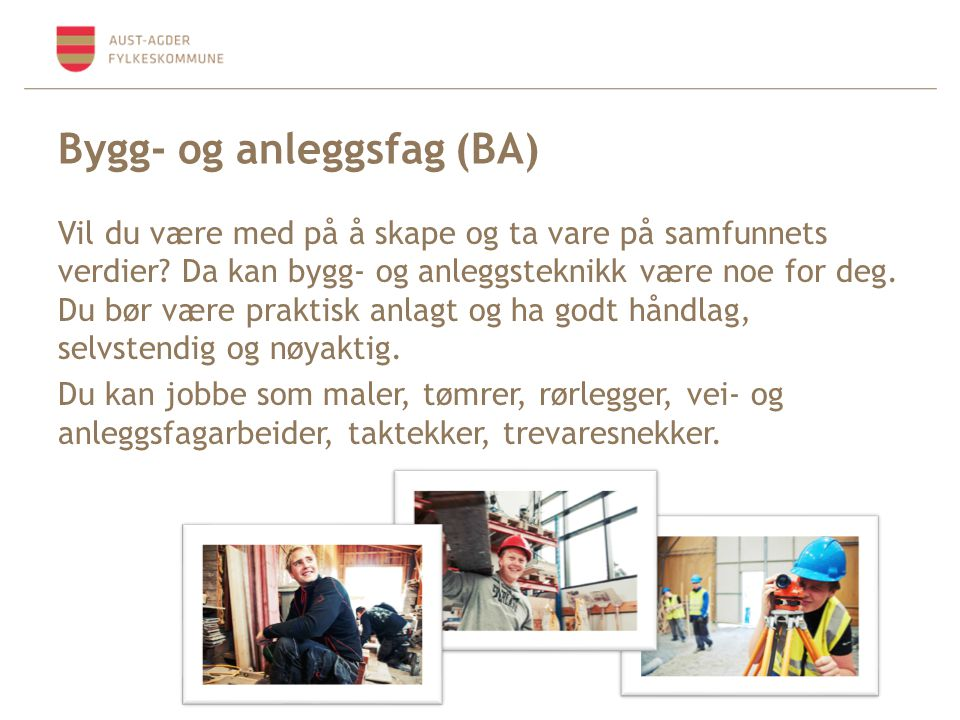 Bygg- og anleggsfag (BA)