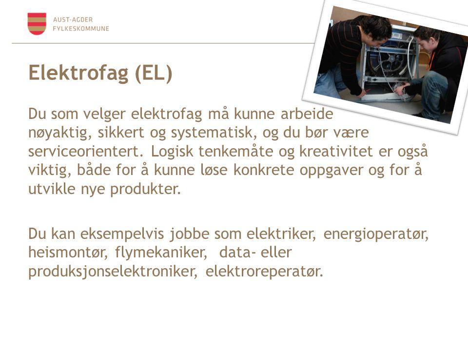 Elektrofag (EL)